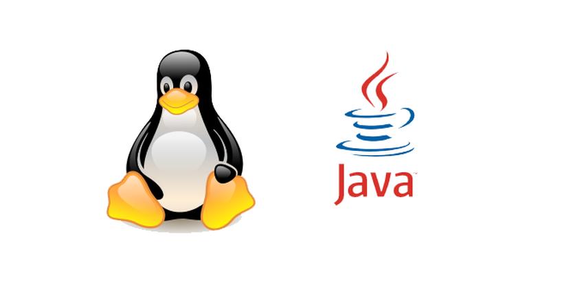 Скачать Java для Linux Бесплатно
